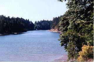 Waterfront view from strata common property, Meadow Valley Properties Thetis Island.